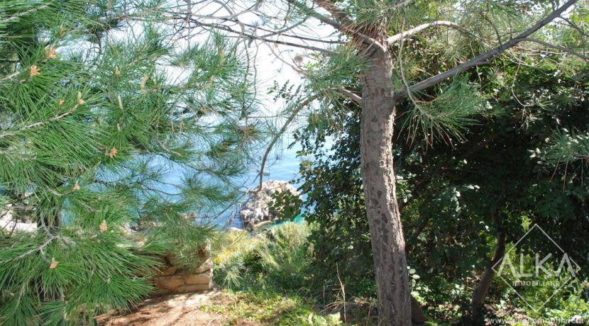 03 vista macchia mediterranea dal piazzale